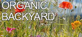 organicbackyard
